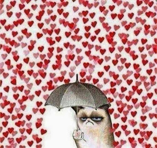heart break, angry cat, love cat, cat umbrella love, cats hate bananas, cats cucumber